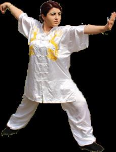 Gong Bu Tai Ji