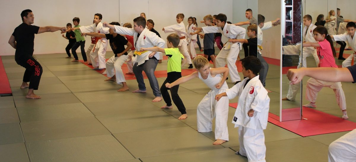 Kampfsportschule Düsseldorf Gerresheim Judo Kung Fu Taekwondo Capoeira